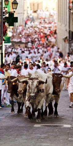 running of bulls.jpg