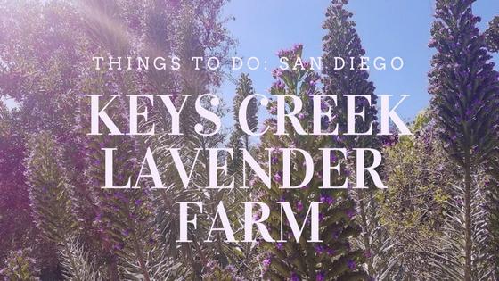 keys creek lavender farm san diego things to do